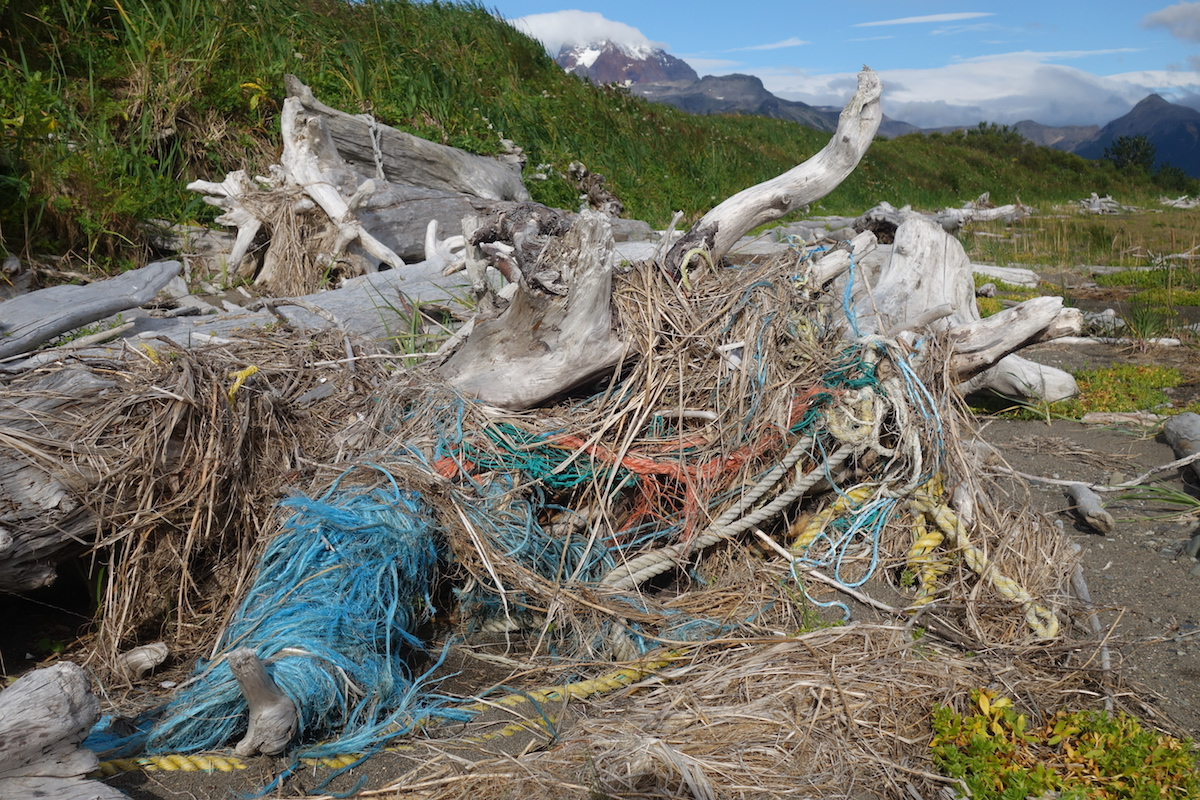 Rope and debris tangled in drift wood