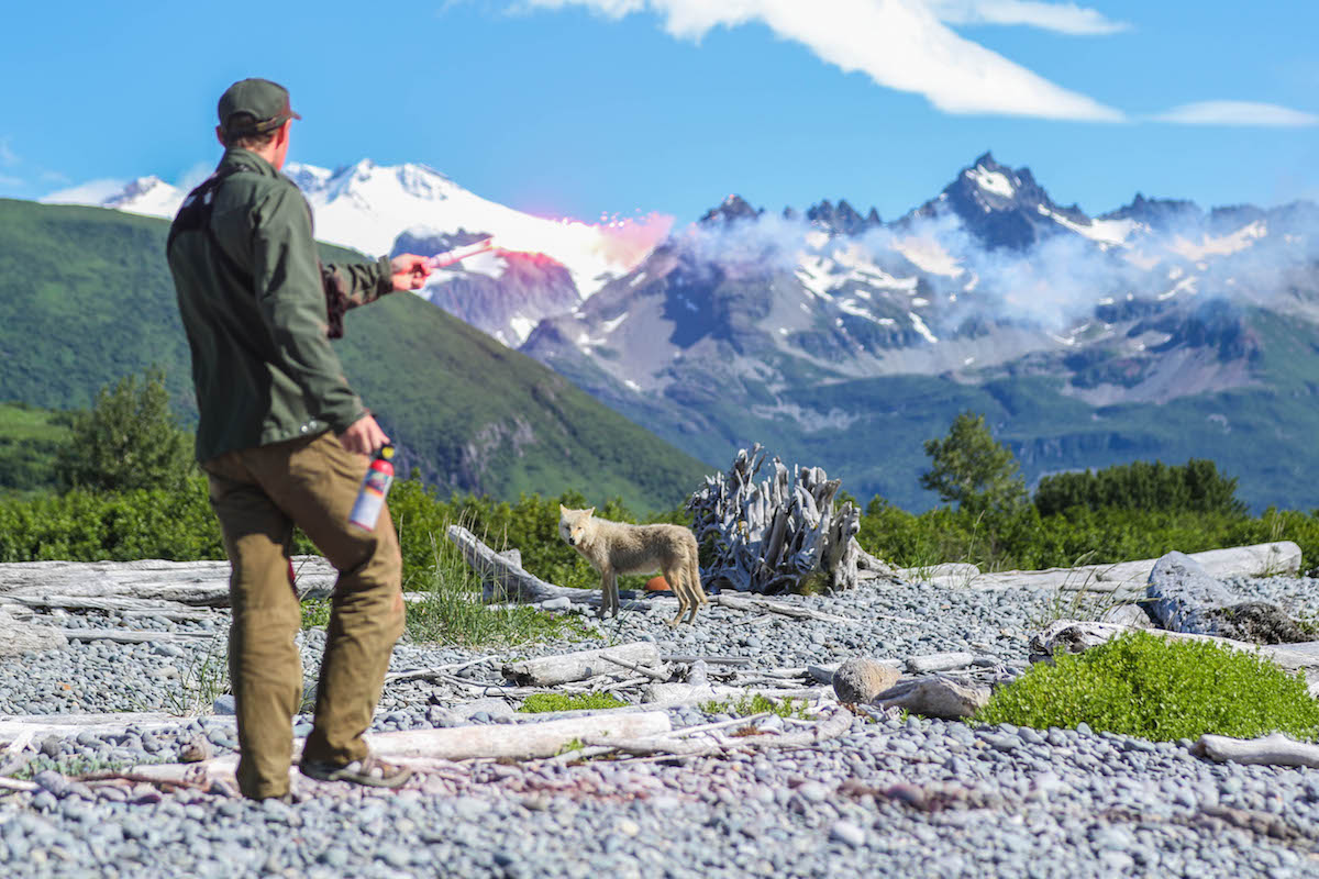 A ranger holds a flare while a wolf watches, with mountains in the background.