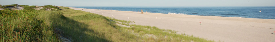 Miles of uncrowded white sandy beaches extend to the horizon, separating the clear blue ocean and undulating grass-covered dunes.