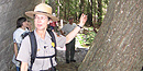 A park ranger points out features of a tree to visitors during a ranger program.