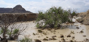 Photo of Chaco wash during a flood after heavy rains.