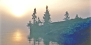 The morning sun burns through fog on the shoreline of Isle Royale.