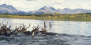 Image of 10 caribou swim across a river with a background of mountains and trees just starting to gold in autumn.
