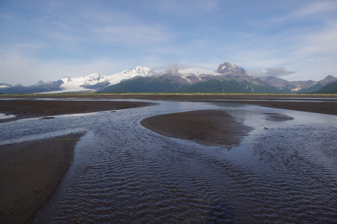 Tidal flats with mountains in the background