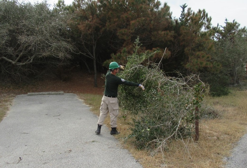 AmeriCorps NCCC helping with vegetation
