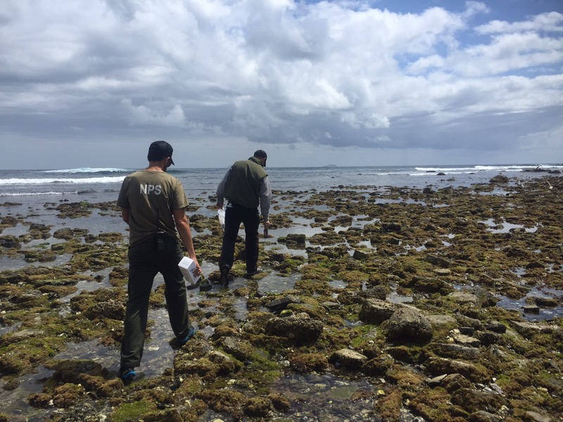 Rangers in the Rocky Intertidal