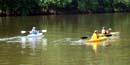 visitors kayak on the schuylkill river