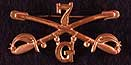 Seventh Cavalry Ensignia Pin.