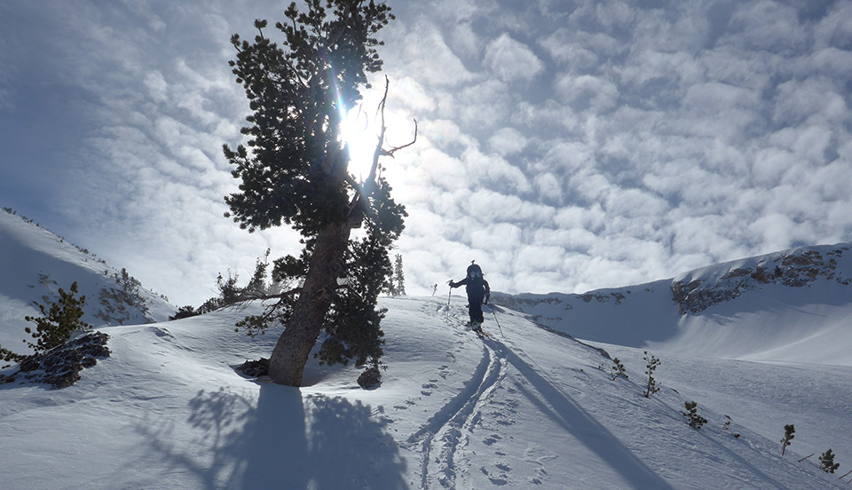 Skier and alto-stratus clouds