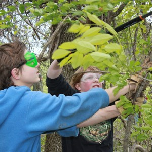 Photo of Boys Tree Trimming during service learning program.