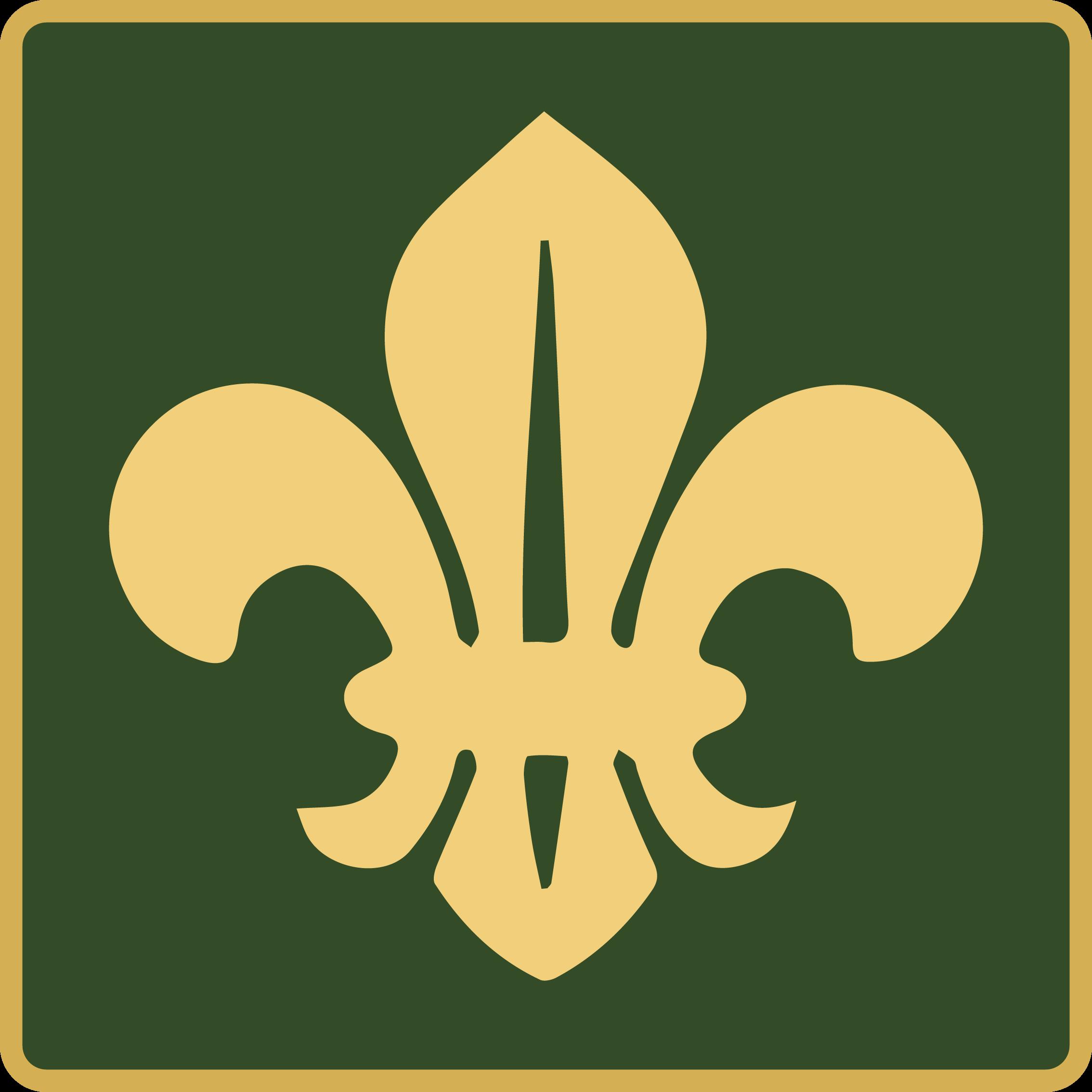Scout Programs Logo