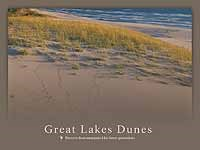 Thumbnail image of poster of sand dune with some grass, Lake in background