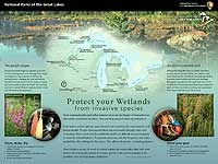 Poster with image inserts, map of Great Lakes with parks locations and description of 2 invasive species