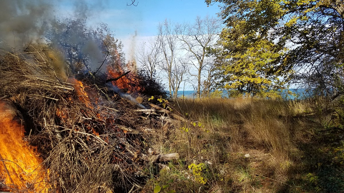 Burning debris pile with Lake Michigan in background