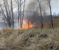 Fire in Beach Grass