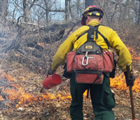 Using a drip torch to ignite a prescribed fire.
