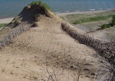 Mount Baldy Restoration Indiana Dunes National Lakeshore