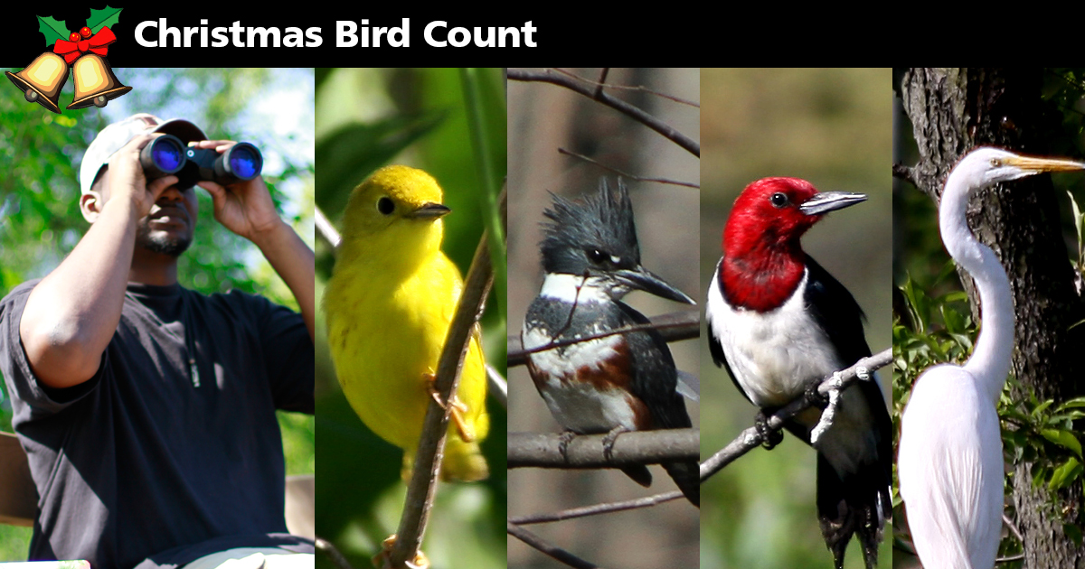 Christmas Bird Count at Indiana Dunes National Lakeshore