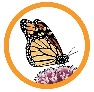 butterfly wall decor a lively addition to your life.htm singing sands winter spring 2020 indiana dunes national park  indiana dunes national park