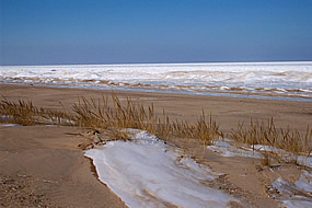 winter scene with ice on lake Michigan and beach sand and dune grass in the foreground
