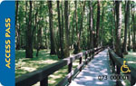 a wooden walkway with handrails going through tall trees