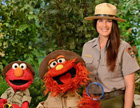 Elmo, Murray, and woman in Park Ranger outfit smiling at camera