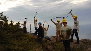 Minnesota Conservation Corps volunteers celebrate working on a park trail with tools raised above their heads.