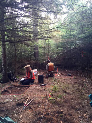 Isle Royale staff kneel on the ground excavating an archeological site.