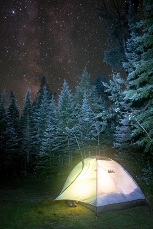 Illuminated tent with starry night visible above trees