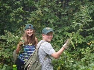 Youth volunteers remove invasive thistles from the park.