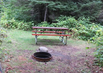 A grassy campsite with a picnic table and fire ring