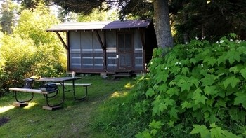 A campsite with shelter, picnic table, and thimbleberries.