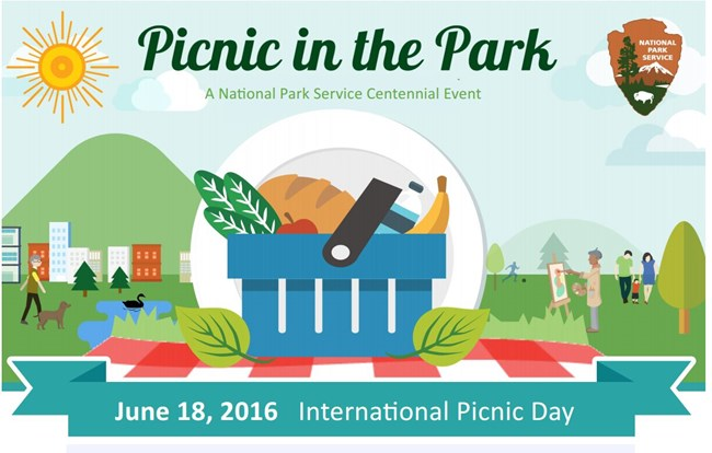 Picnic in the Park poster