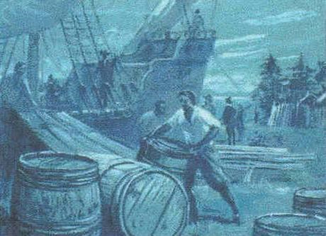 Settlers rolling barrels (Hogs Heads) onto ships