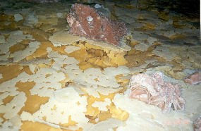 Calcite rafts in Jewel Cave