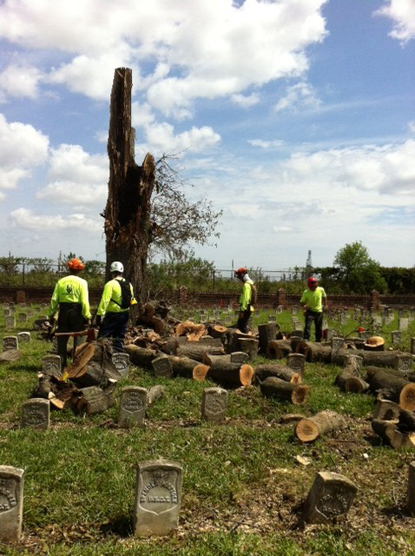 Image of men in hard hats and safety vests working on downed trees after Hurricane Isaac