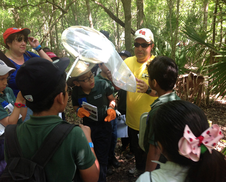Image of man with insect capture net and students identifying insect