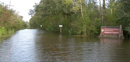 Image of flooded road with Barataria Preserve sign visible at right