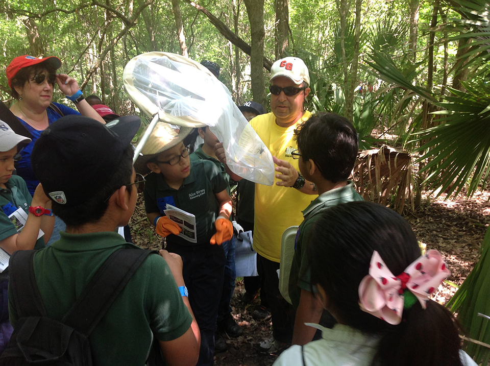 Park volunteer with insect net shows insect to students