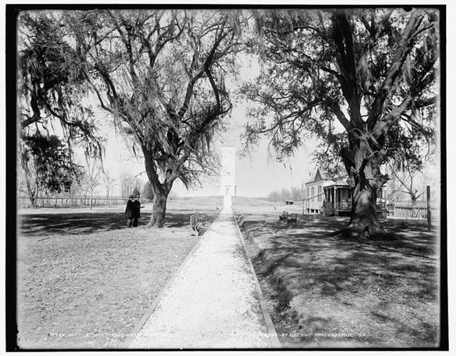 Image of early 1900s photo showing long path between trees leading to Chalmette Monument