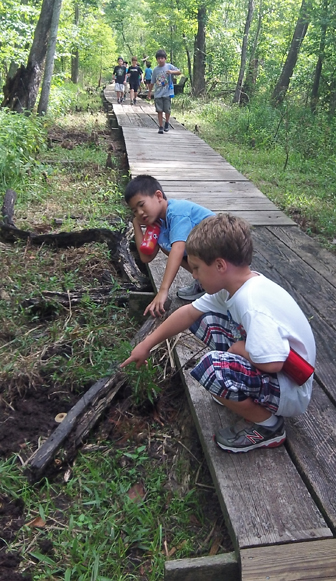 Image of boys squatting on a boardwalk and pointing at a log