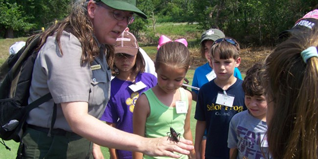 Ranger shows campers a lubber grasshopper