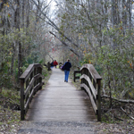 Image of boardwalk trail with people walking
