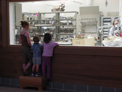Image of young visitors watching a paleontologist work in the lab.