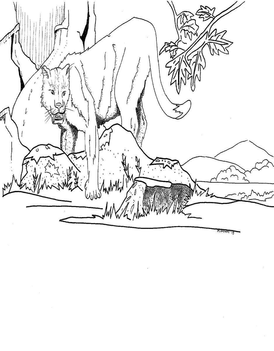 A black and white coloring page depicting a Nimravus brachyops among foliage and rocks.