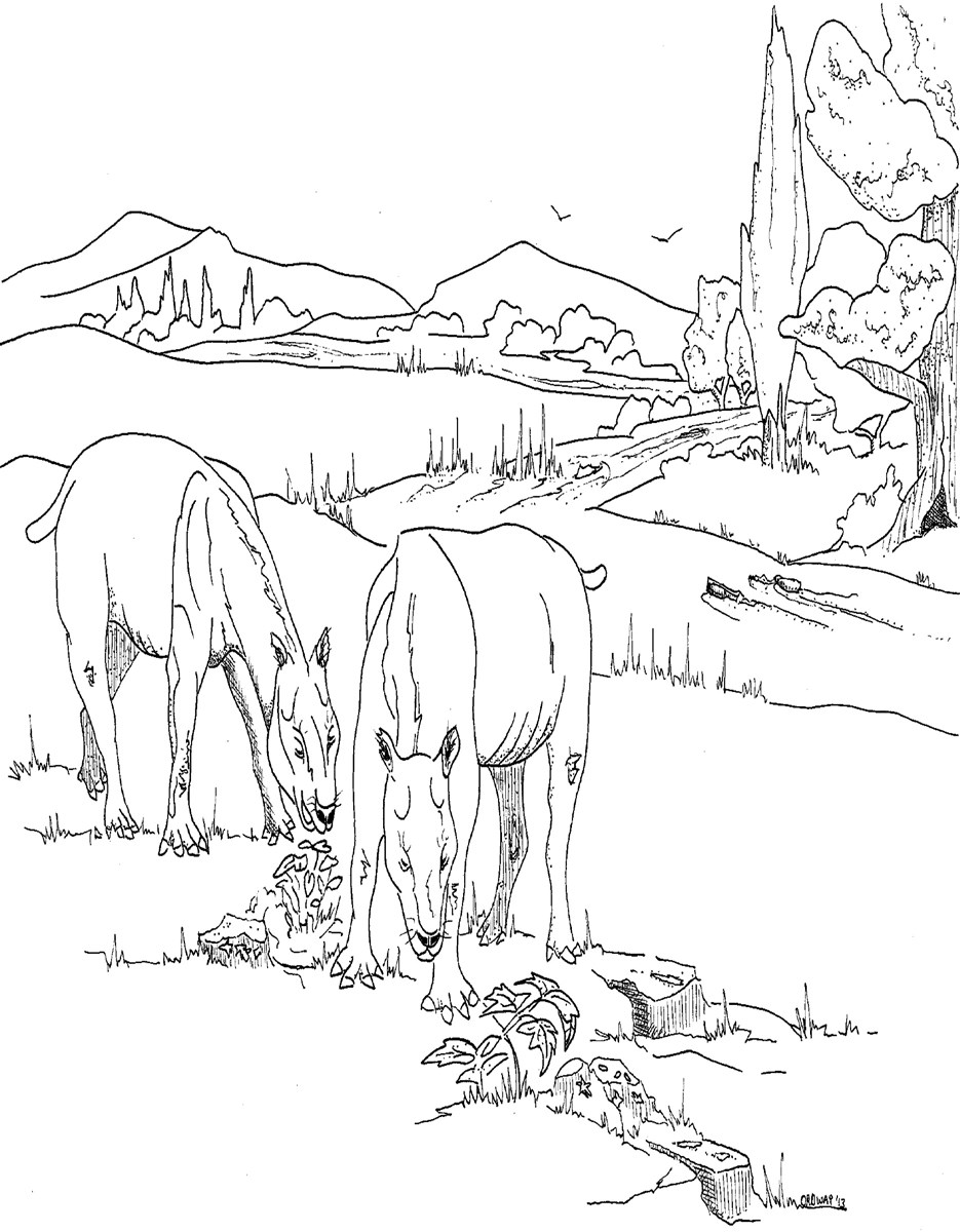 A black and white coloring page of two oreodonts (pig-like herbivores) grazing.