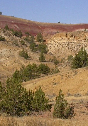 Clarno paleosols at a distance