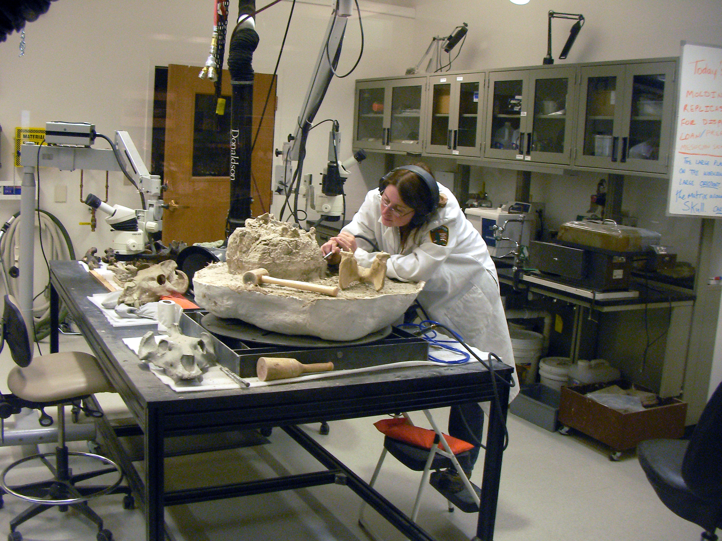 Jennifer Cavin in Laboratory
