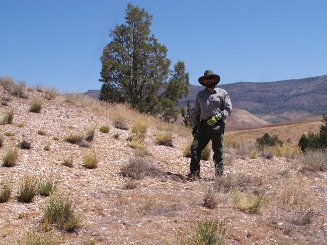 Paleontologist Nicholas A. Famoso surveys and researches the park to help protect the fossils.