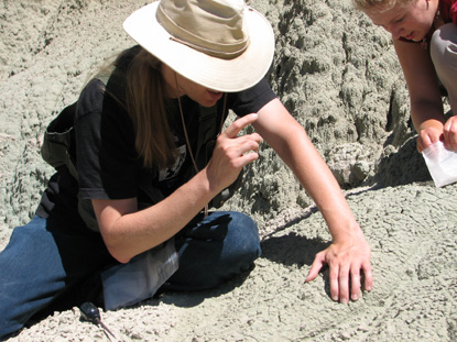Image of a paleontologist in the field.